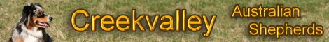 creekvalley.de